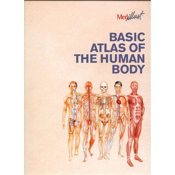 BASIC ATLAS OF THE HUMAN BODY