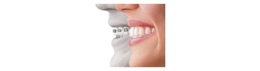 Odontoligía